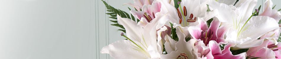 Retailer Background